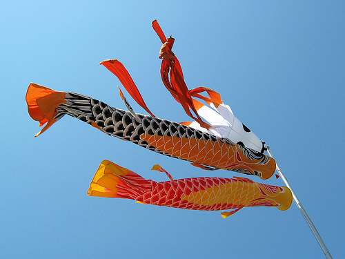 Koinobori flags, flying to celebrate boys' day